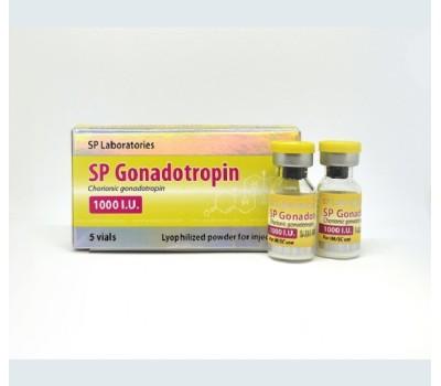 SP Laboratories HCG 1000iu 1 vial